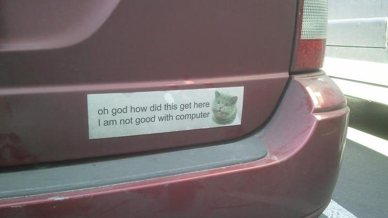 I Can Haz Bumper Sticker?