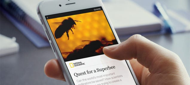 Facebook Now Puts Full Articles From Big Publishers in Your News Feed