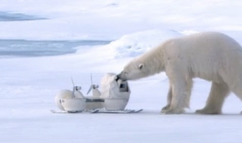 Watch Some Polar Bears Adorably Destroy a Nature Show's Spy Cameras