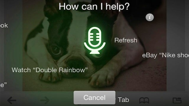 Dolphin Browser for iOS Unveils Nuance-Powered Voice Search