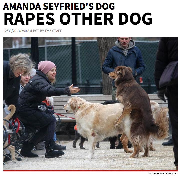 TMZ Has Moved On to Reporting Dog Rape