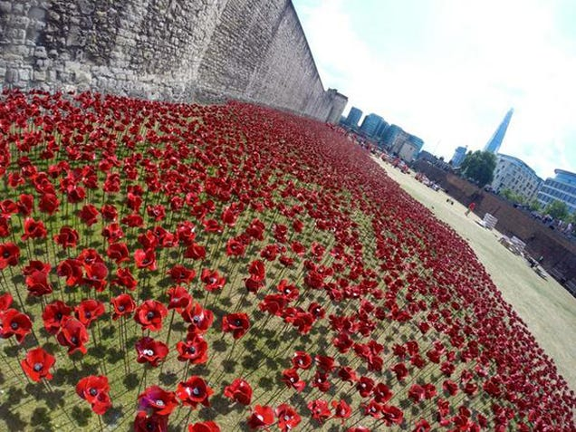888,246 Handmade Poppies Surround the Tower of London to Commemorate WWI