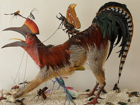 Brilliant taxidermied mutants from Dimension X