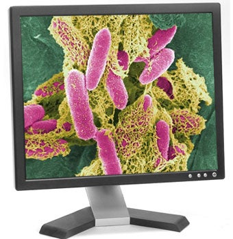 Why E.Coli Bacteria Is Better Than Your Computer
