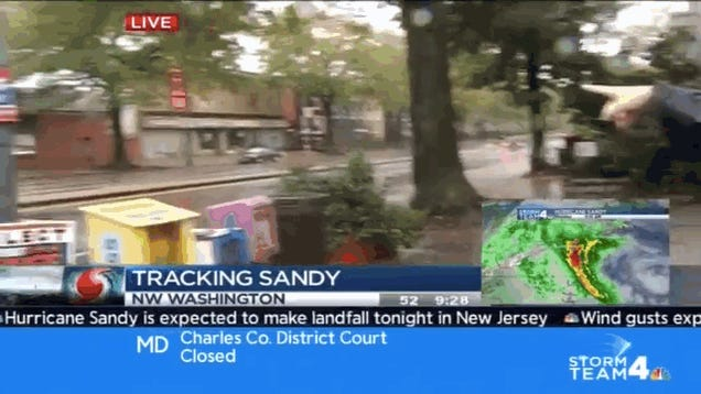 The Shirtless Horse-Headed Man Running Around on Live TV Is Our Hurricane Sandy Spirit Animal