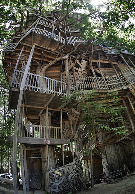 13 Ingenious Treehouses That Go Out on a Limb