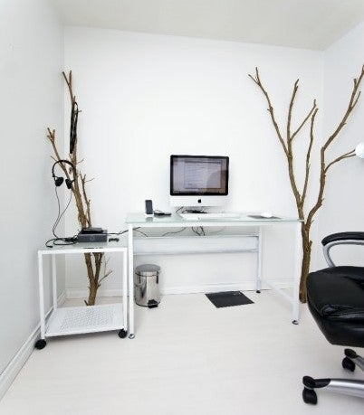 Bare Branches: Incorporating Organic Elements in Your Workspace
