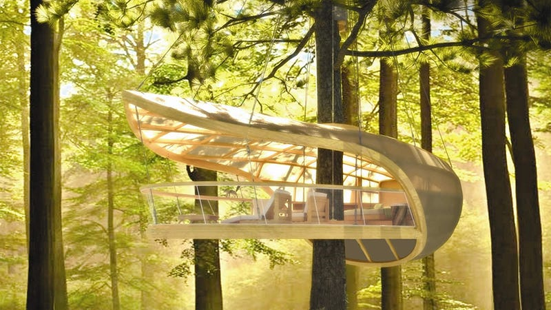 I want to spend the summer in this tree house