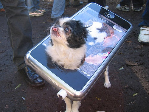 AT&T Wants to Keep Track of Your Dog