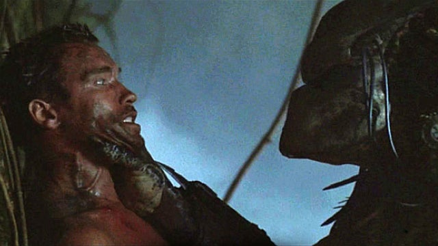 The latent erotic tension in the film Predator