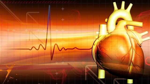 Should A Convicted Rapist Receive An Organ Transplant?