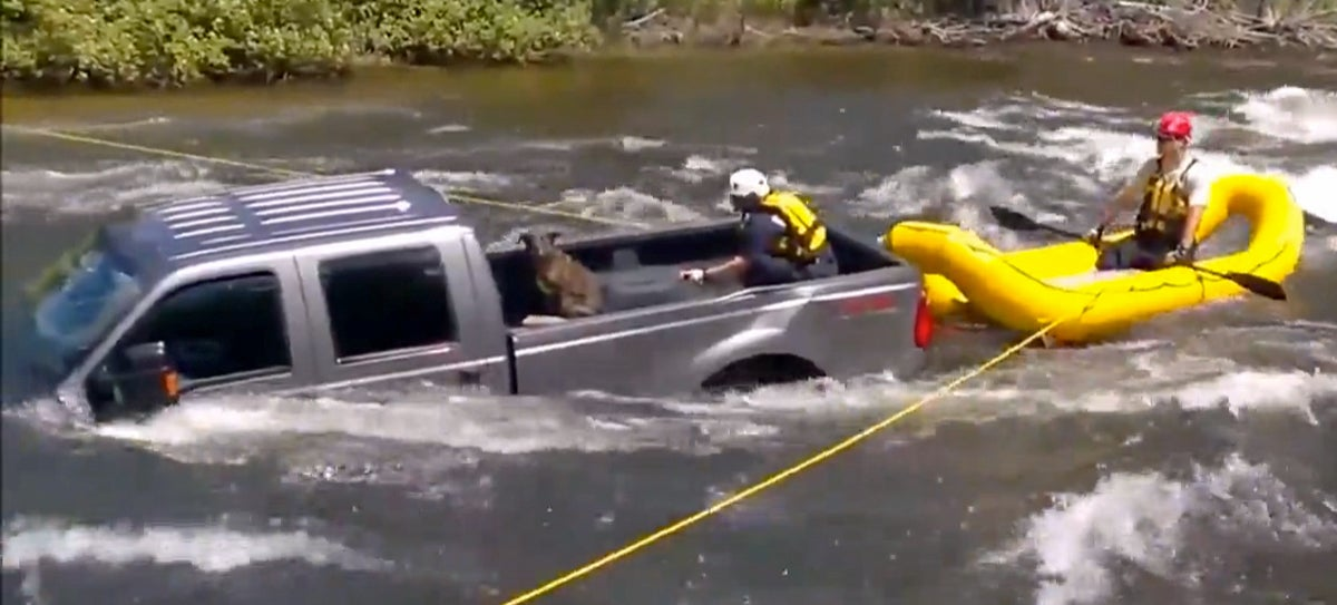 Dog Rides A Truck Into River Rapids, Harrowing Rescue Ensues