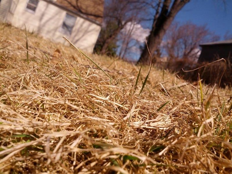 Shooting Challenge: Spring