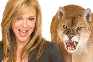 How Do We Survive The Cougar Attack?