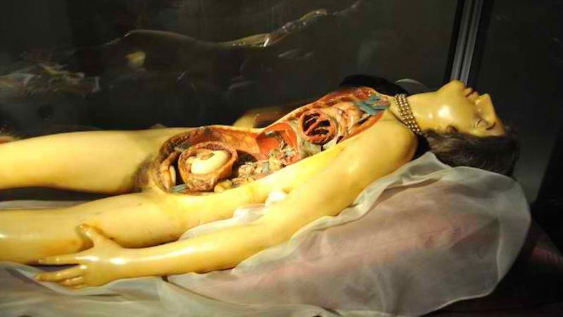 The Gore and Ecstasy of the 19th Century Wax Woman