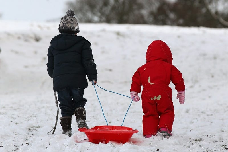 Adorable Kids And Adorable Dogs Make The Most Of Snow