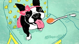 How You Raise a Pet May Predict How You Will Parent