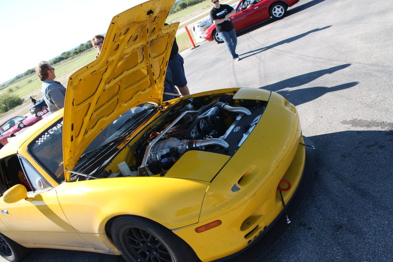 Miatas At A Race Track Multiply Worse Than Rabbits