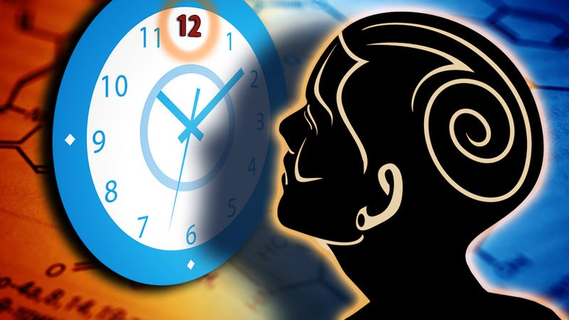 How Your Brain Perceives Time (and How to Use It to Your Advantage)