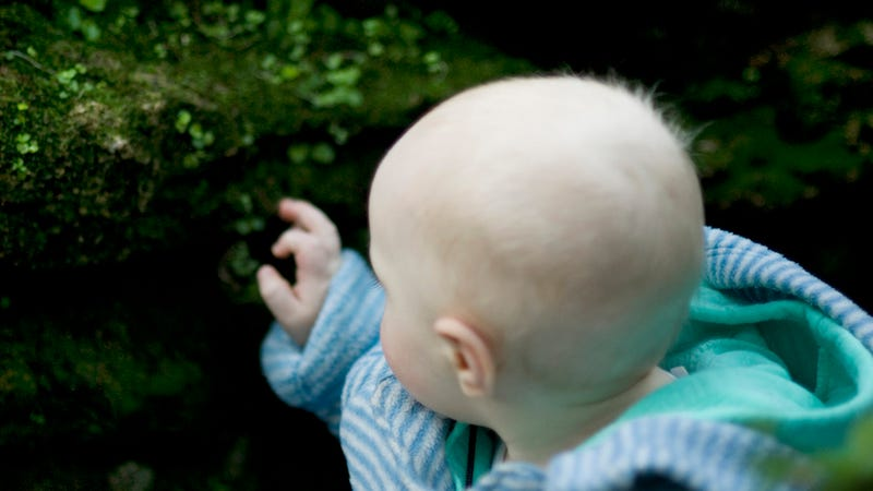 Why are babies scared of plants?