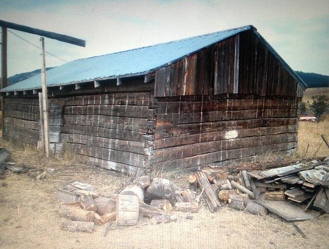Unprofitable Tech Company Buys Two Old Log Cabins