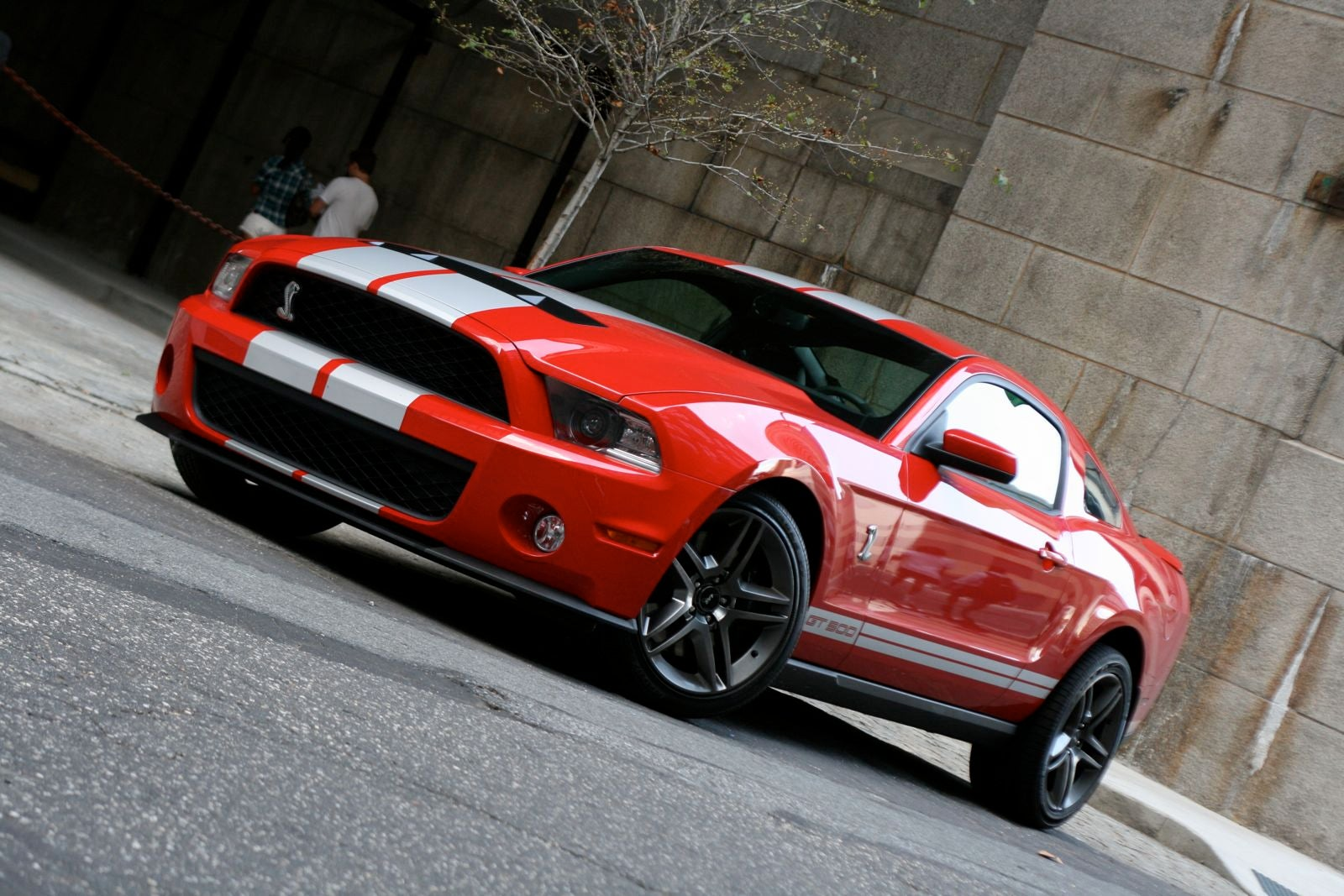 2010 shelby gt500. Black Bedroom Furniture Sets. Home Design Ideas
