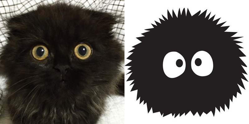 Cat Looks Just Like a Studio Ghibli Character