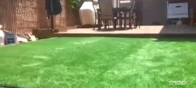 There's a pool hidden underneath this yard of grass