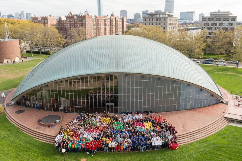 A team's-eye view of the 2013 iGEM competition