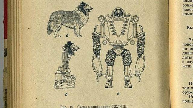 Robot Dog Gallery
