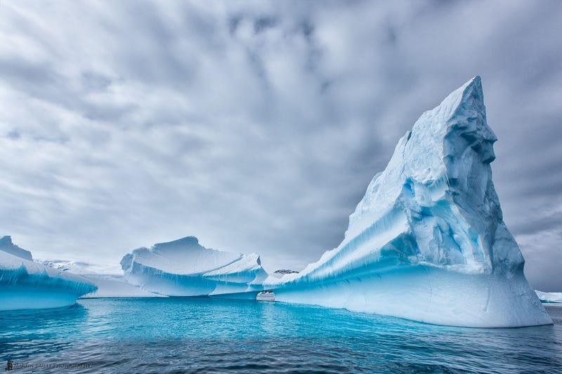 Antarctic ice looks so tempting as summer temperatures soar