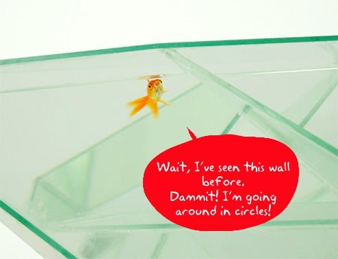 Infinity Aquarium Is a Goldfish Freedom Simulator