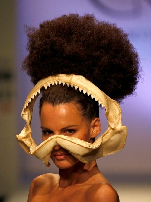 Fashion Week, Shark Week Merger Going About as Well as Expected