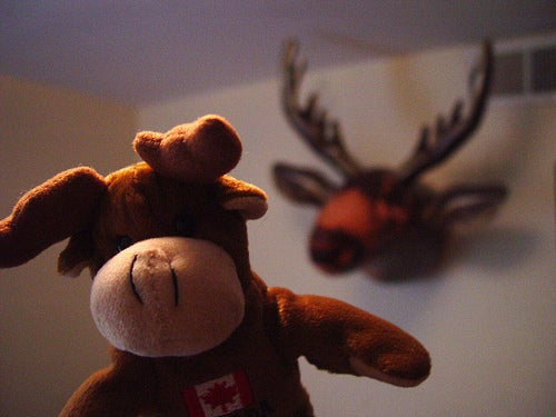 Pinch Sulzberger's Moose Killed the 'Times'
