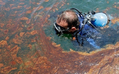 Oil Spill Threatens Americans' Love of Profiting From Others' Misery