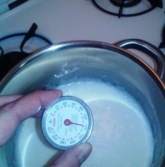 Yogurt A Be Kidding Me: Making Yogurt at Home