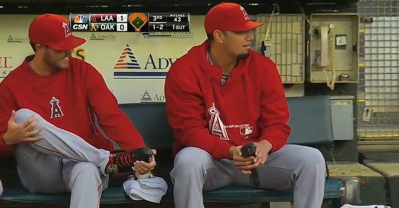 Angels Reliever Rescues Injured Pigeon During Game