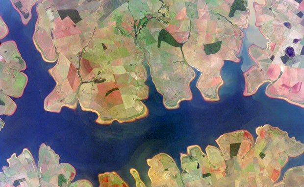 Earth's Ecosystems Look Juicy When Seen From Space
