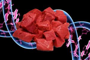 Ten Years In, Lab-Grown Meat Still Stuck In Its Infancy