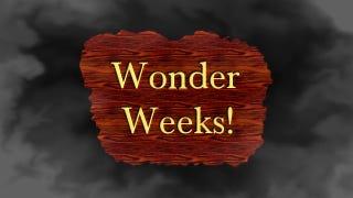 """Dadhacker - Are You Having A """"Wonder Week""""?"""