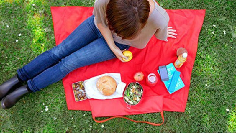 An Unfolding Picnic Bag/Blanket Has Us Pining For Spring