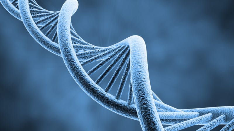 DNA's double helix discovery turns 60 – how monumental is it, really?