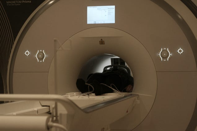 This Siemens MRI Scanner Is a Beautiful Machine That Saves Lives