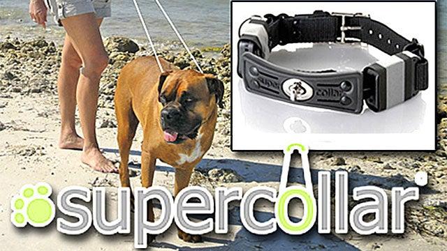 A Supercollar For Super Strong Pups