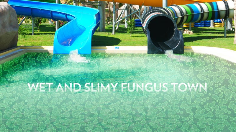 Water Parks Are Filthy Cesspools of Despair