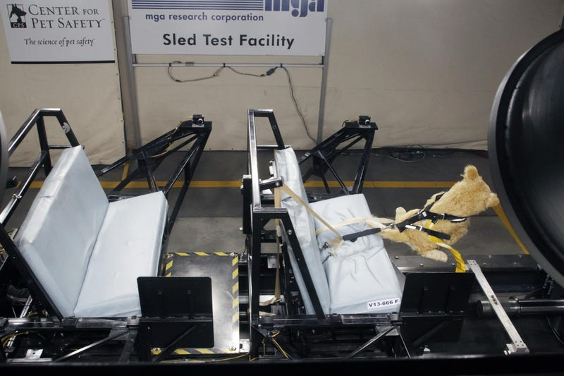 Subaru Is Launching These Cute Pet Crash Test Dummies... For Science