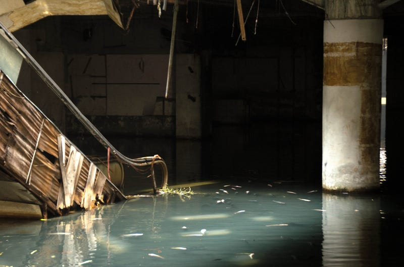 These Abandoned Malls Would Be Awesome Post-Apocalyptic Film Locations