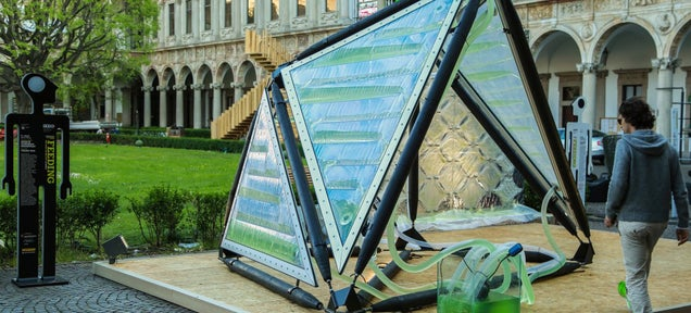 This Photosynthetic Algae Roof Filters the Neighborhood Air
