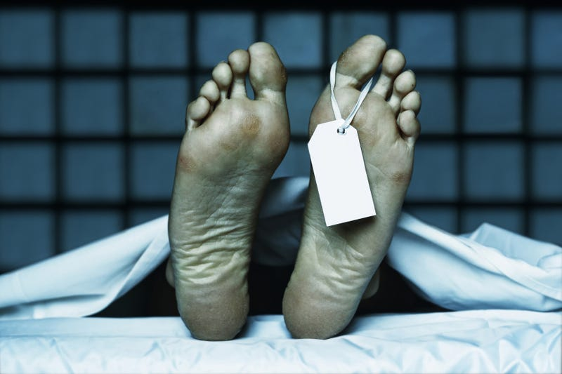 Andreessen Horowitz's Newest Hire Thinks Death Can Be Deprogrammed