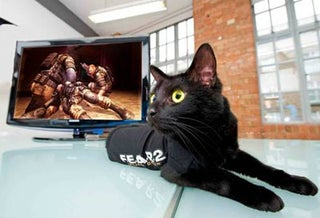 Black Cats Set To Advertise F.E.A.R. 2